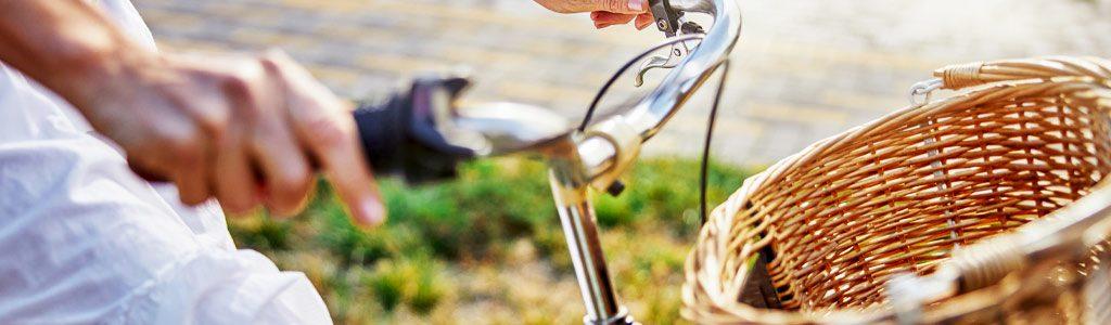 bicicletas-araoz-vintage